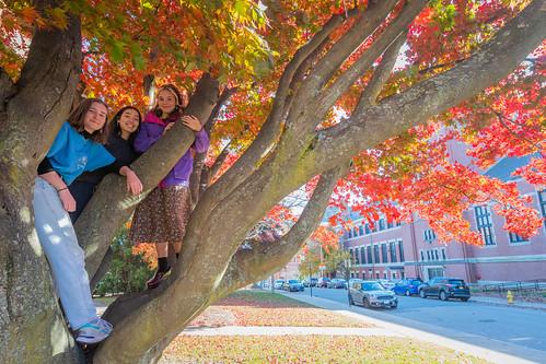 2019-Students-In-Tree-1-Nov-9