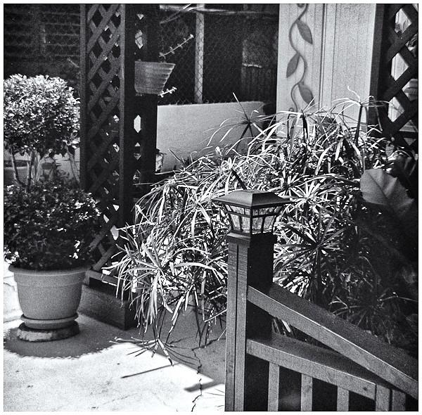 Polaroid Swinger 20 (1966)