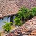 Colonial Homes Tour,Cafe de Arte, Granada Nicaragua (C67_3517-LR)