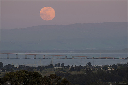 bayarea wave ocean shore seaside coast california dusk seascape bay landscape outdoor clouds sky water rock mountain rollinghills sea sand fullmoon wetlands evening sunset sanmateobridge moonrise