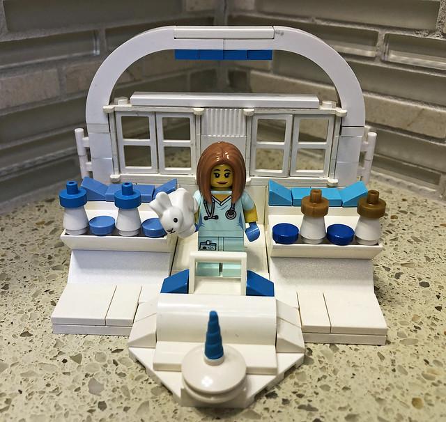 LEGO Medical Vignette - S17 Veterinarian