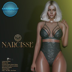 -Narcisse- Monthly Midnight Madness - Midday Gift