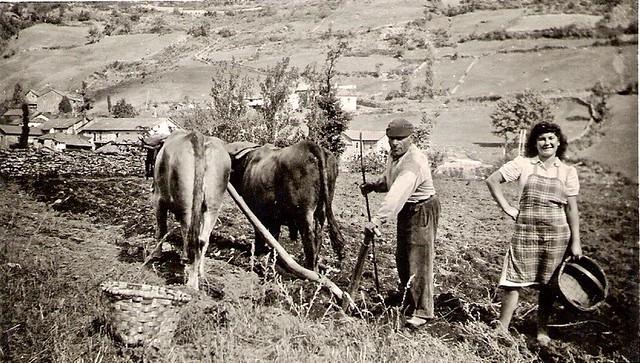 Recuerdos de mi familia Asturiana. ( 1950)