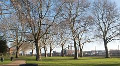 London Island Gardens park (# 0140)