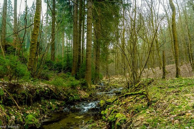 Im Landschaftsschutzgebiet