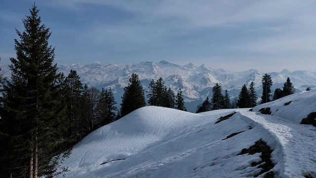 CH SZ Höhenweg Ibergeregg - Rothenfluh