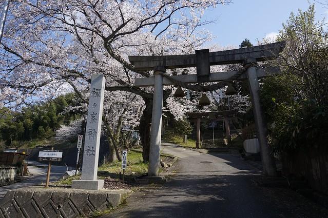 禅ヶ峯神社から高尾城址公園へ