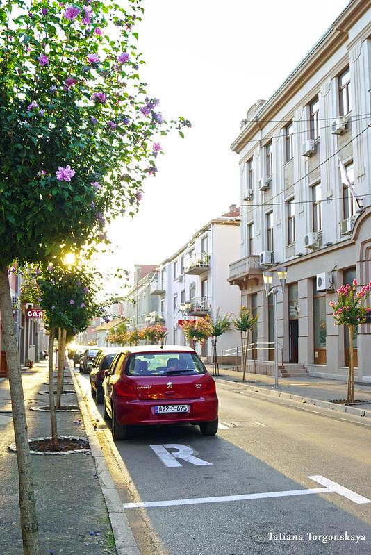 Улица в центре Требине с уличной парковкой