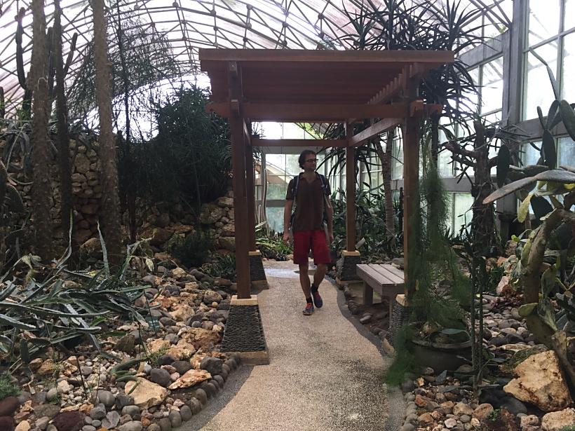 rumah kaktus