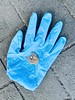 Rubber glove (touch-and-go series) l'aumone