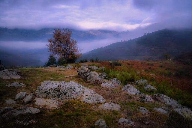 El Raso Landscape (Explored)