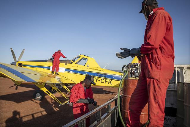 Desert locust control operations - Kenya