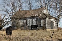 Schoolhouse - rural Albany, MO