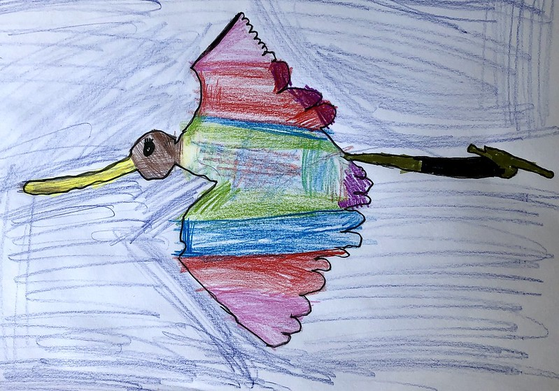 Godwit by Charlotte, from @beckleesharpy