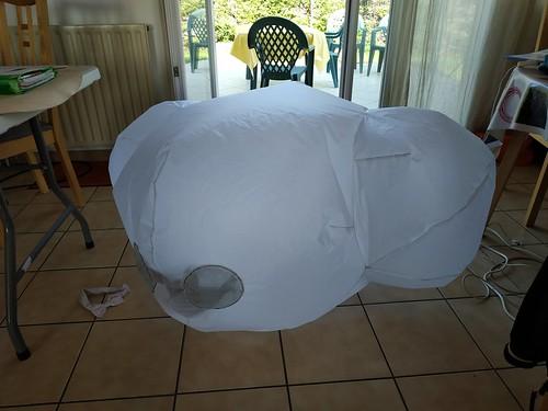 projet en cours: tortue gonflable 49753826248_7ed6c31ea4
