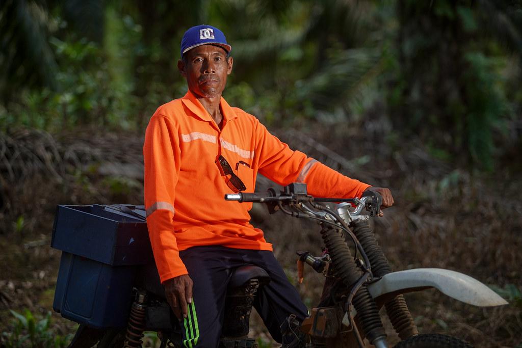 Yanto, the head of the Sabintulung Bina Tani cooperative Muara Kaman Ulu, Kutai Kartanegara, East Kalimantan. His income from palm...