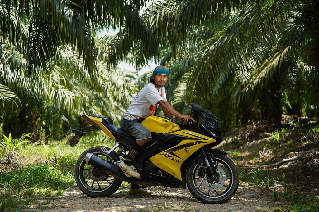Bohari, a migrant from Lombok, West Nusa Tenggara, works as a palm harvester in the village of Sabintulung, Muara Kaman...