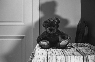 Bear and Shadow - Film Leica | by Photo Alan