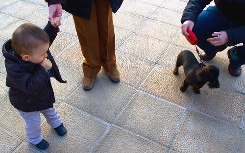 Igualar los derechos de la infancia con los de los perros en el confinamiento COVID-19