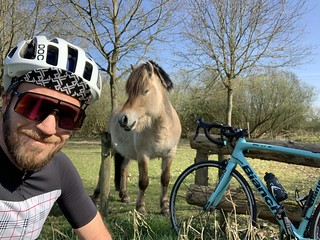 65km ride, saw the first tulip field of the year and some playful horses | by Klaas / KJGuch.com