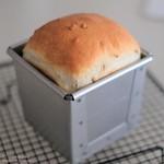 ひまわりパン20200407-DSCT6953 (2)