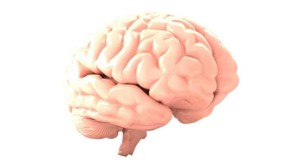 des-nanoparticules-contre-le-cancer-du-cerveau