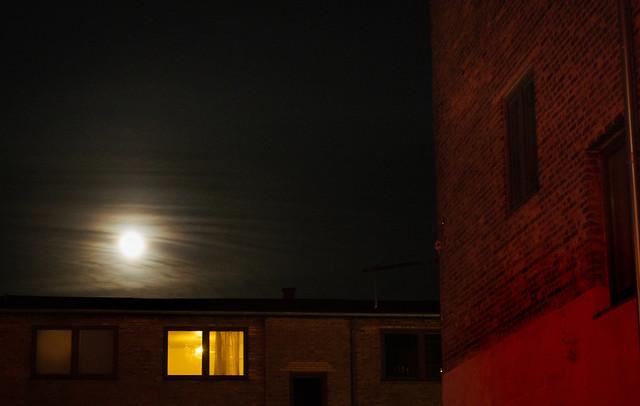 Suburban Nights...(21)