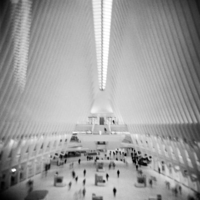 Architecture #7