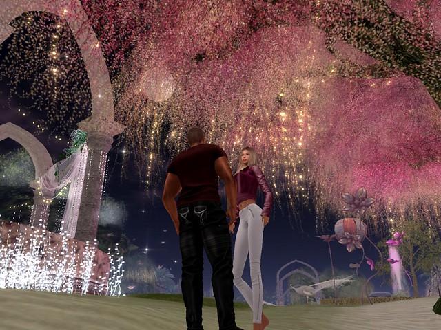 Mystical Dreams - Fairy Garden Conversation