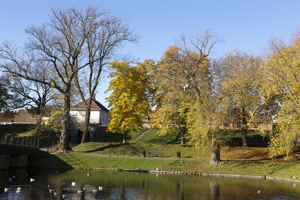 Golden_October 2.19, Fredrikstad, Norway