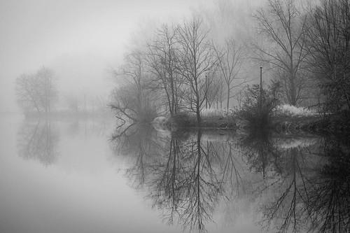 monochrome bw fog landscape blackandwhite columbia lakekittamaqundi maryland unitedstatesofamerica