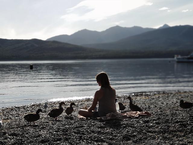 The Queen of Ducks
