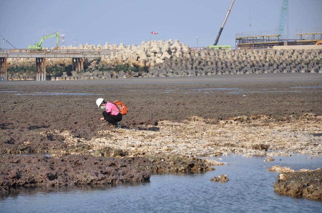 第三天然氣接受站工區緊鄰大潭藻礁G1區,肉眼即可看出破壞痕跡。孫文臨攝