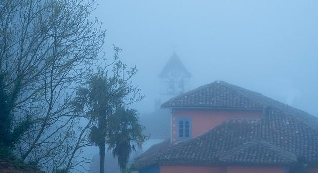 niebla madrugal /  misty morning