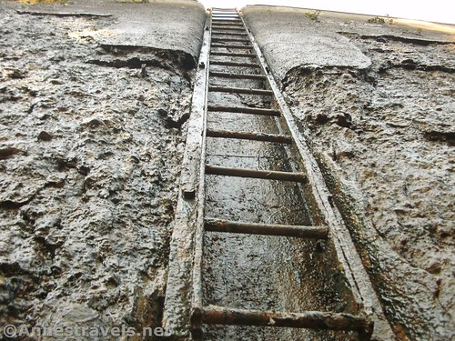 Looking up the slimy ladder in Lock 32 on the Erie Canal, Rochester, New York