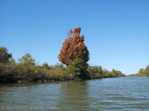 Fall colors across the Erie Canal from Meridian Center Park, Rochester, New York