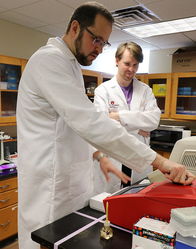 Dr. Constantinos Kyriakis and Fletcher North work in lab.