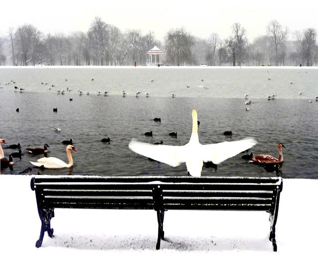 Park bench 1