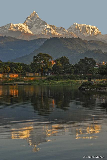 DSC1204 Amanecer en el Fewa Tal (Lago) con el Machapuchare, 6.997 m, y el Annapurna III, 7.555 m., al fondo, Cordillera del Himalaya en Pokhara, Nepal