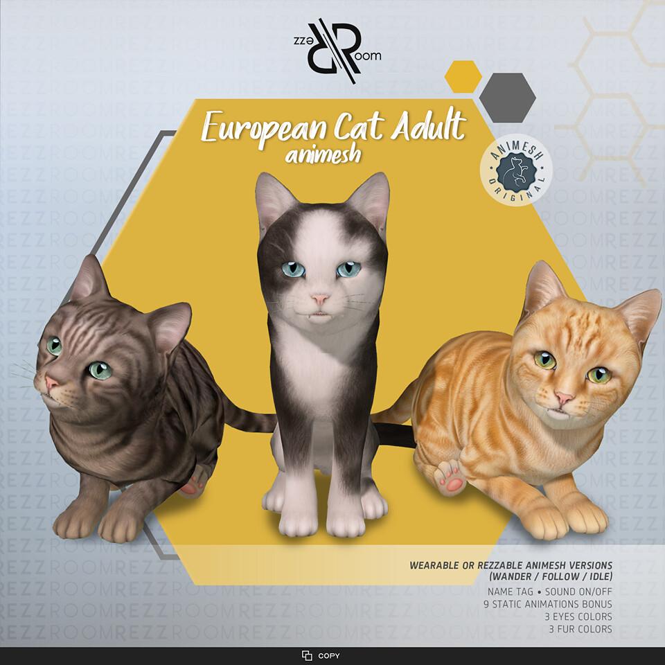 [Rezz Room]European Cat Adult Animesh (Companion)