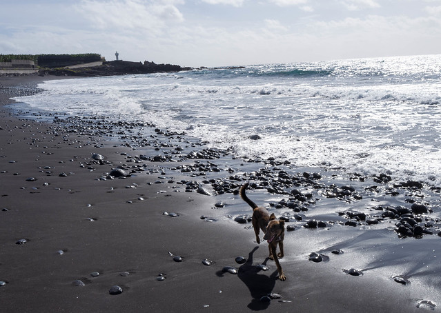 Playa Nueva de Los Guirres, La Palma