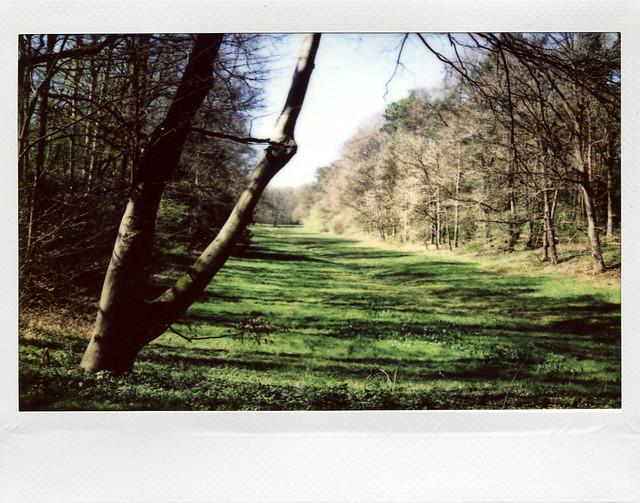 Emsverschwenkungen - I shot film