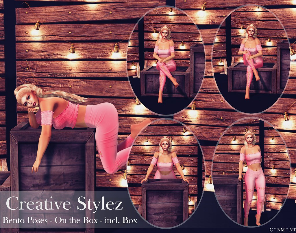 Creative Stylez – Bento Poses – On the Box –