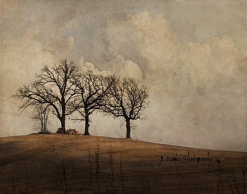 A Hundred Minus One Day | by jamie heiden