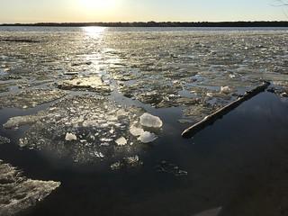 Spring ice break up at Westboro beach