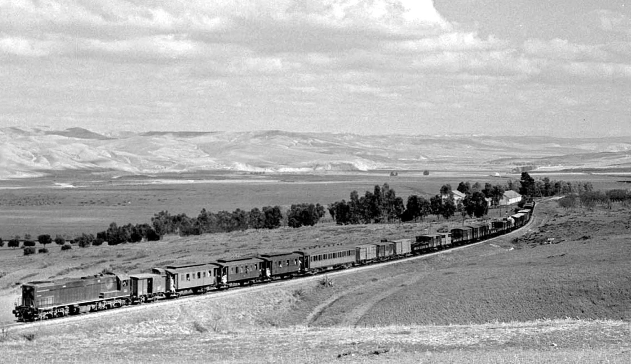 Chemins de Fer au Maroc - ONCF  - Page 4 49758403952_45c8a7ca65_o_d