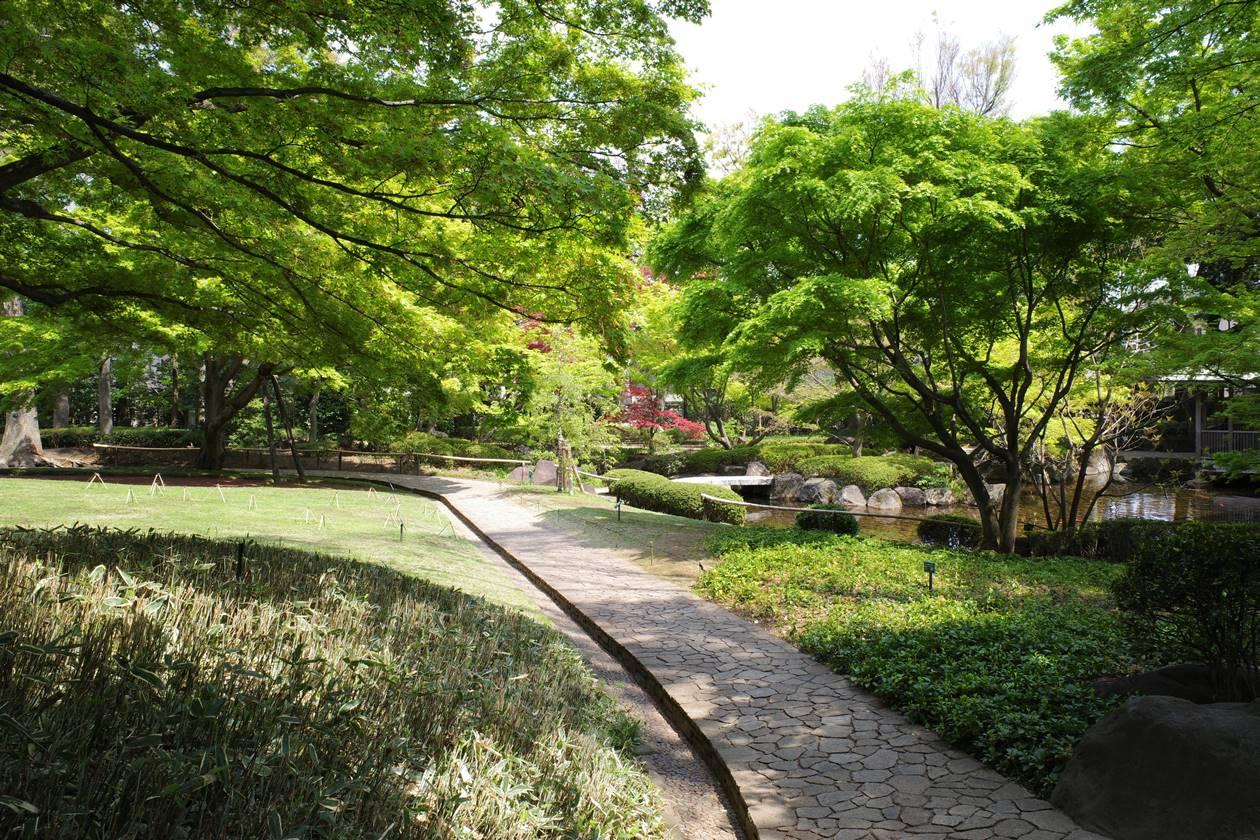 4月の大田黒公園