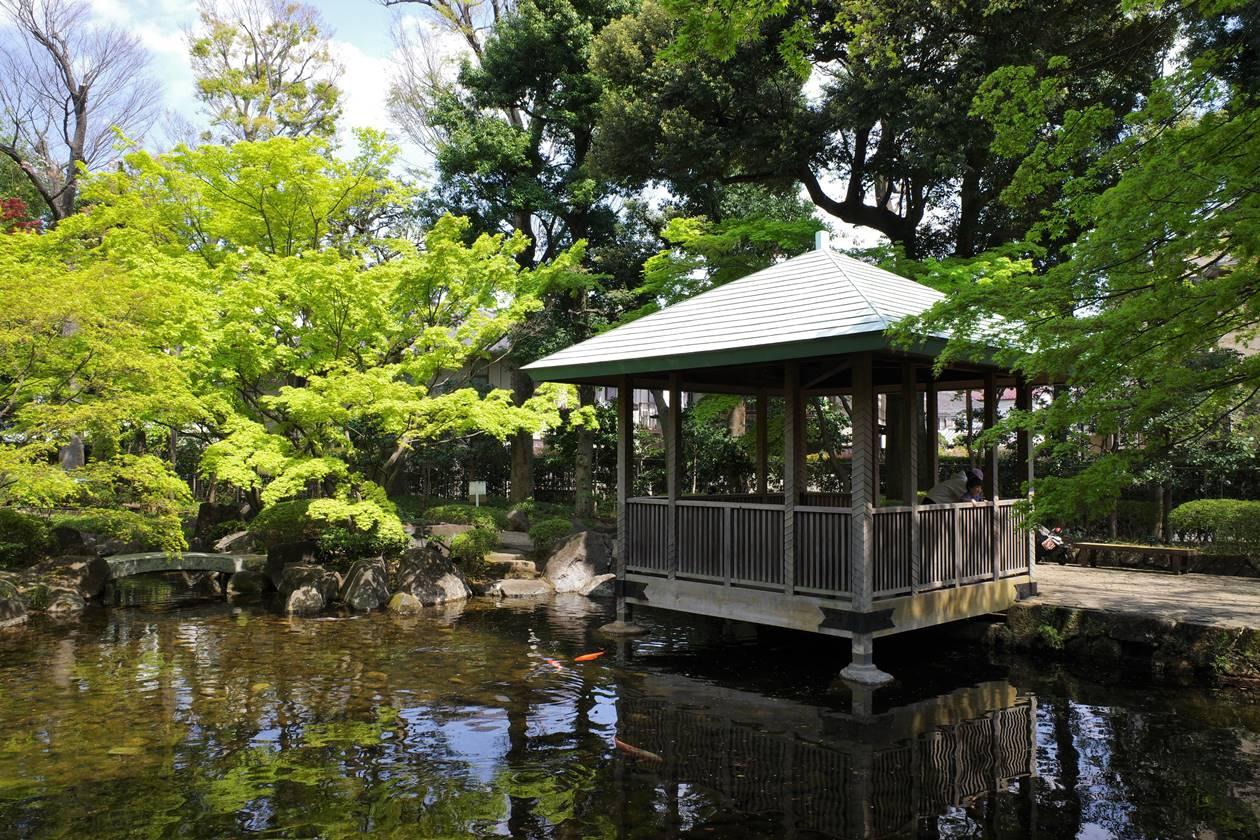 大田黒公園 池のほとりの東屋