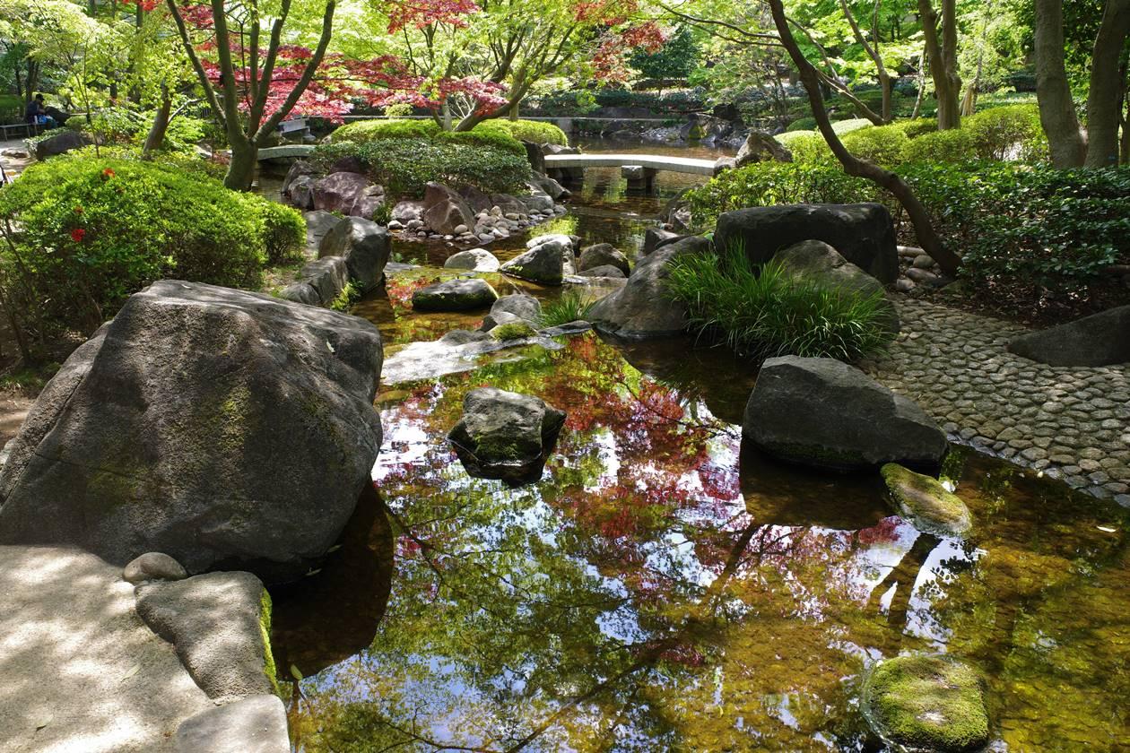 大田黒公園 鏡のような小川