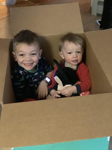 boys in a box